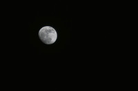 Obligatory moon shot. It was only taken at 95mm, but its presence demanded some form of tribute.